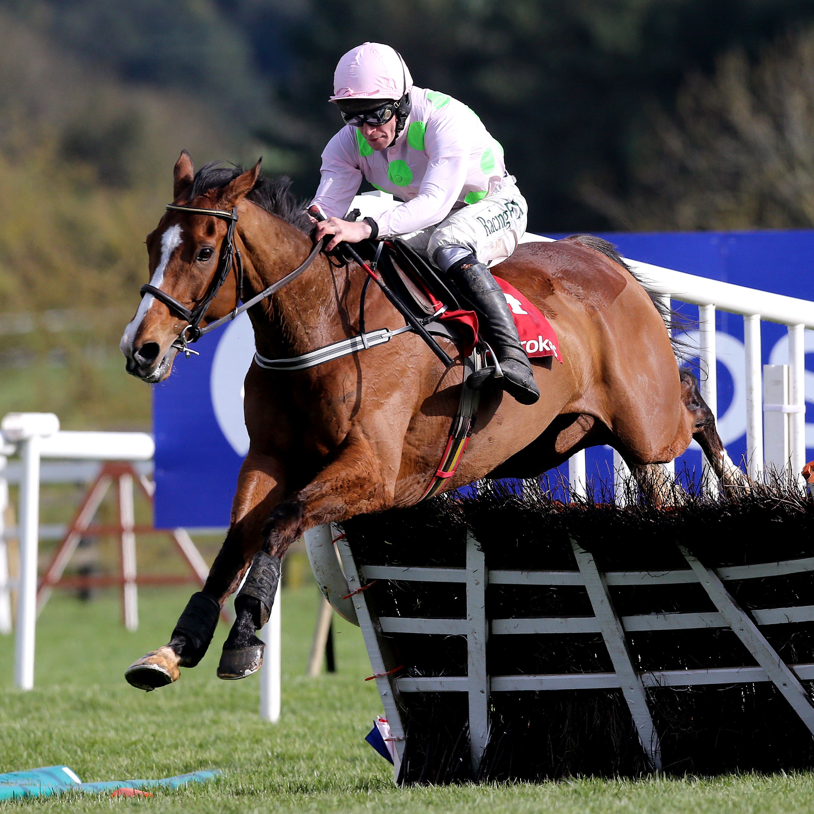 Faugheen is set to step back up in distance at Leopardstown