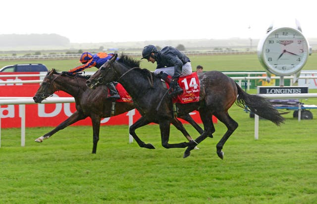 Tiger Moth (14) was just held off by stablemate Santiago in the Irish Derby