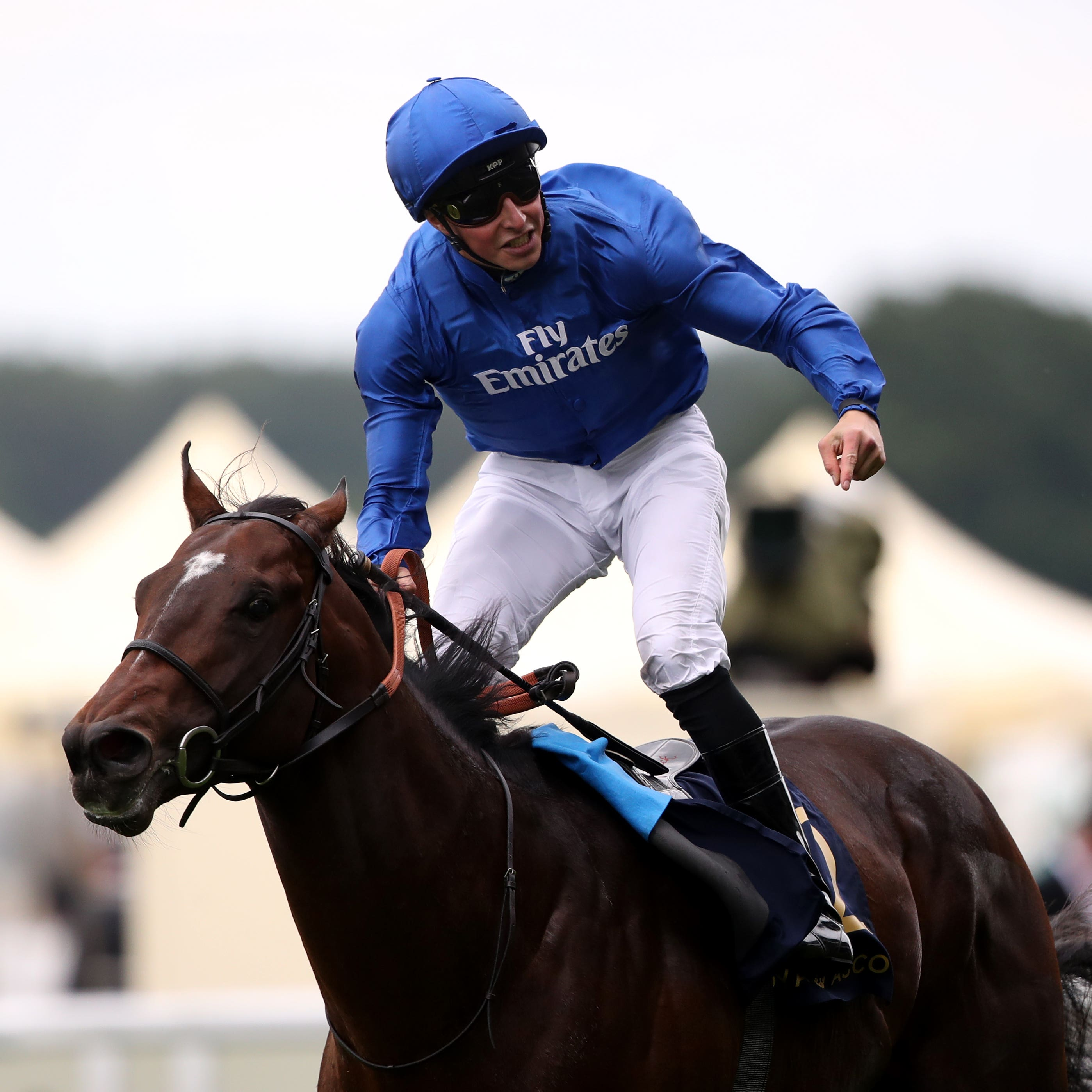 Blue Point could go for the Nunthorpe next