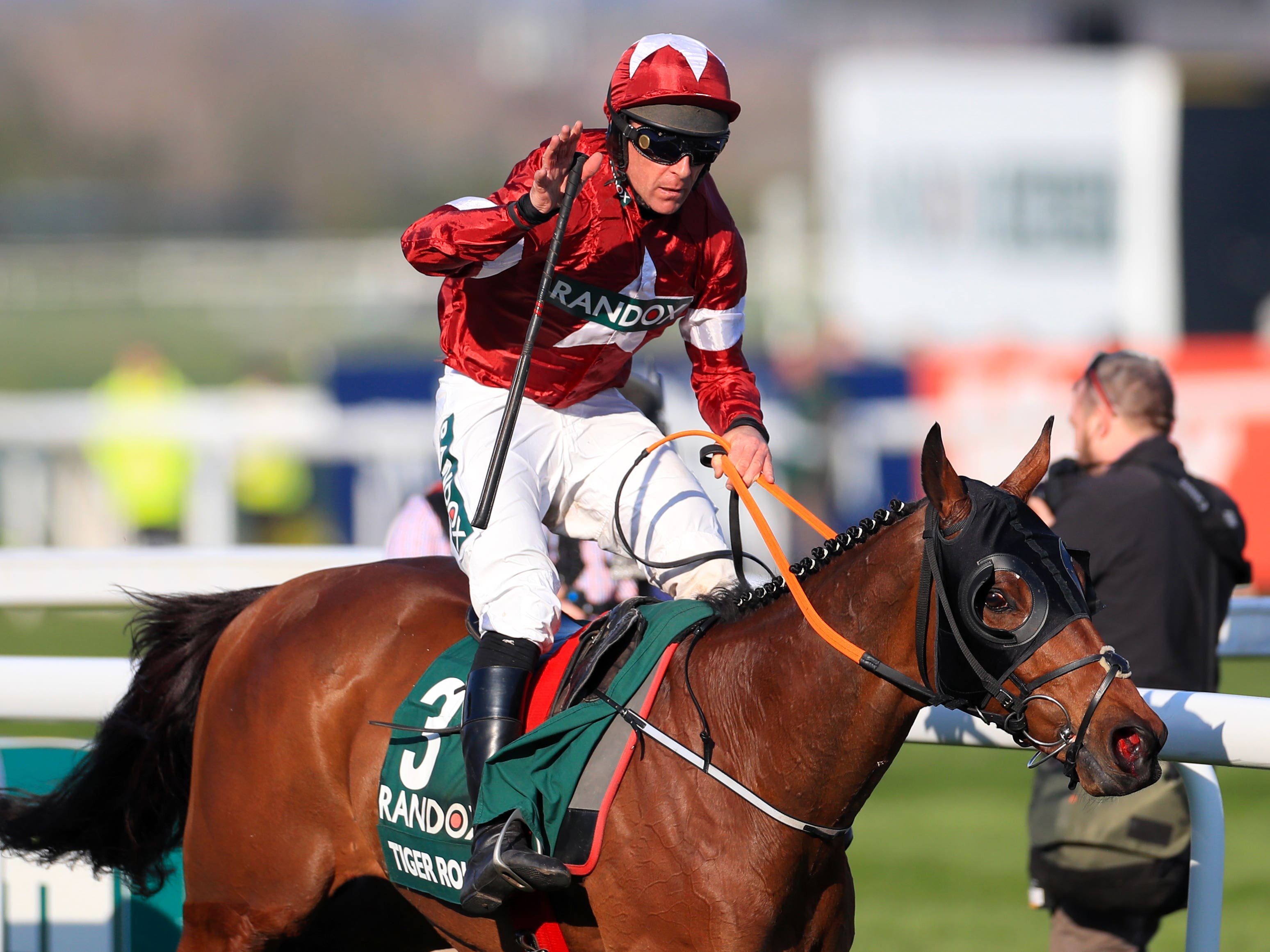 Tiger Roll has been unstoppable at Aintree (Mike Egerton/PA)