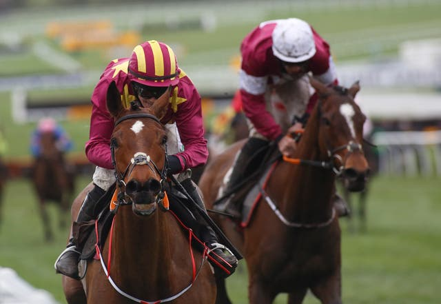 Minella Indo is already a proven performer at Cheltenham