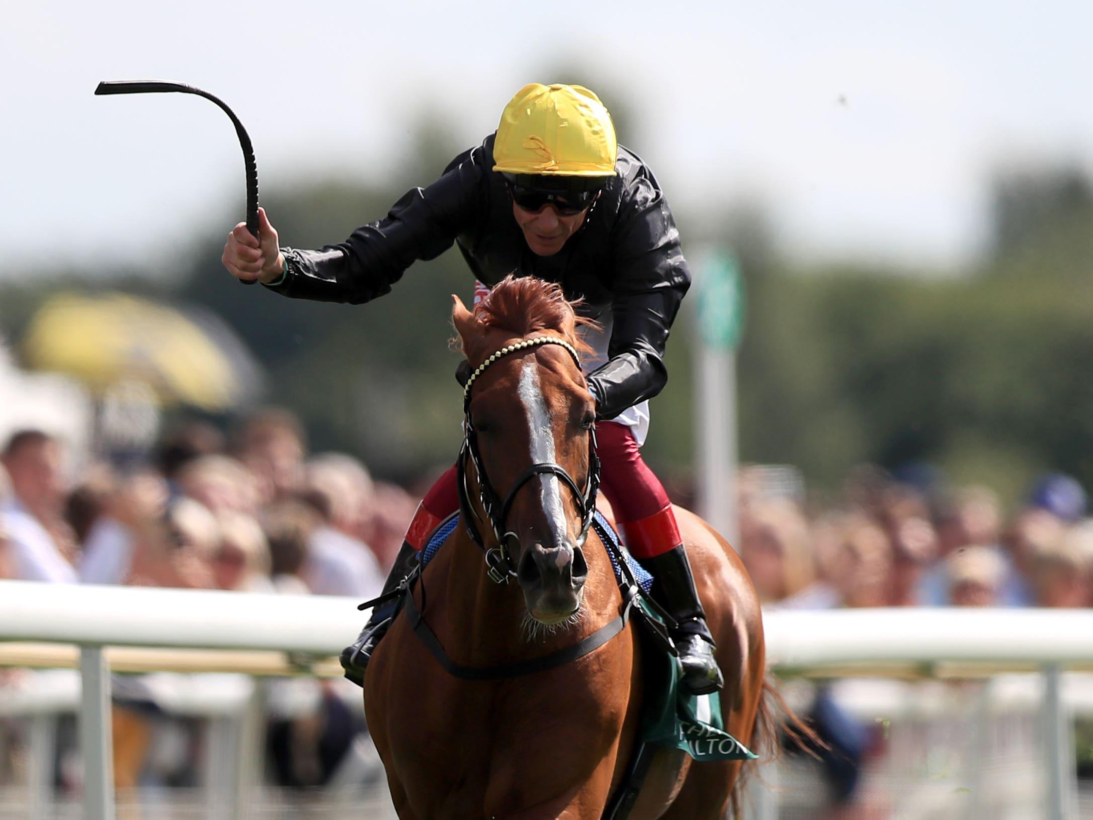 Stradivarius has no peers in the staying races (Simon Cooper/PA)