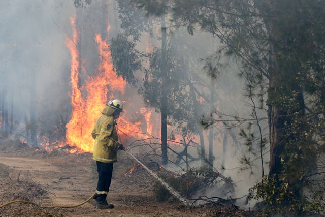 Australian firefighters have been battling to try to control extensive bush fires