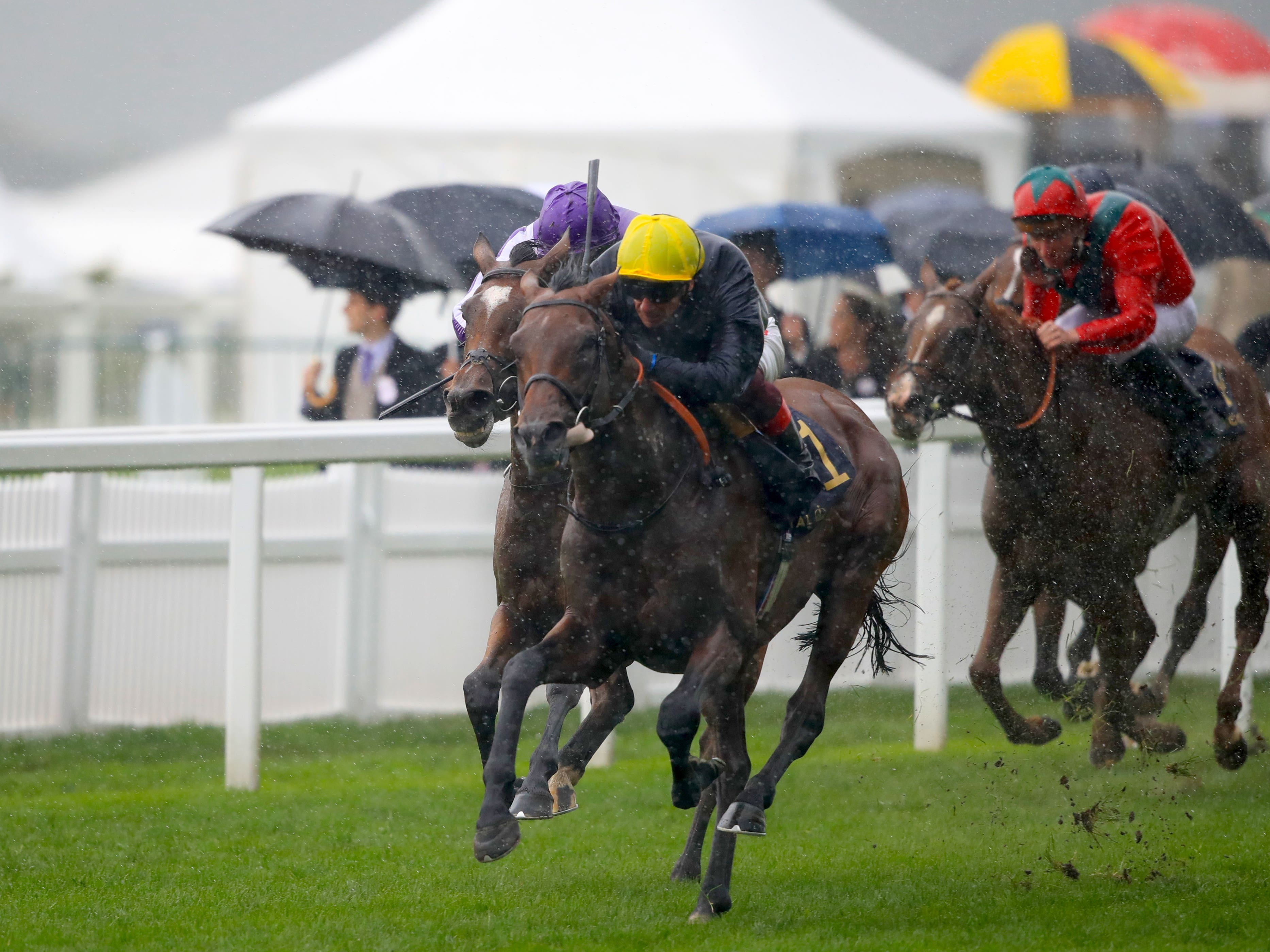 Crystal Ocean outgunned Magical to win the Prince of Wales's Stakes (Adam Davy/PA)