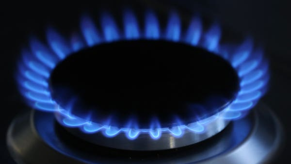 Government extends energy price cap until end of 2021