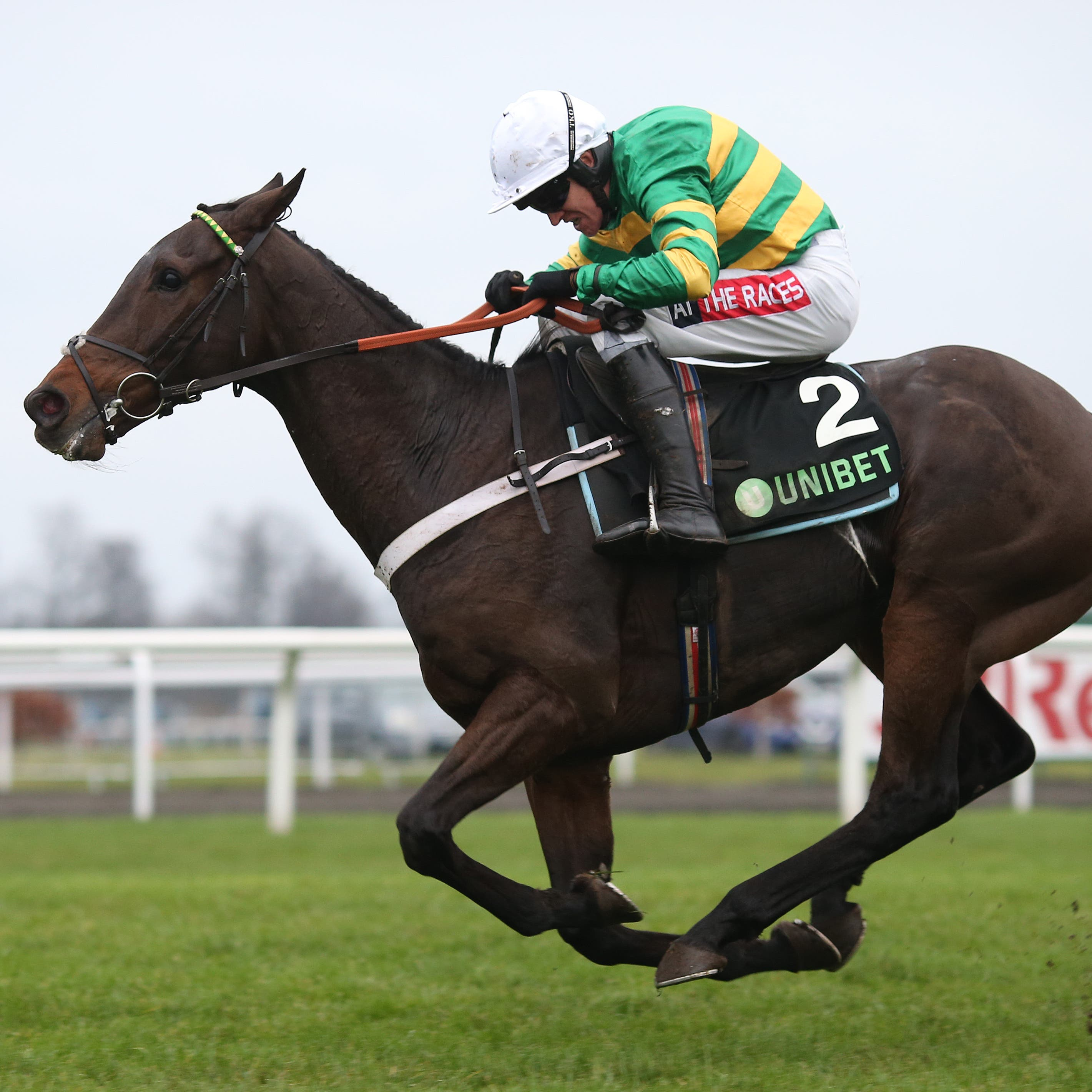 Buveur D'Air will bid for a third victory in the Champion Hurdle