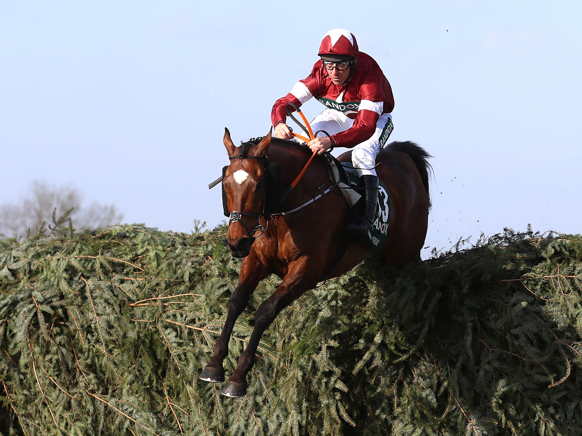Tiger Roll reappears on Friday (Tim Goode/PA)