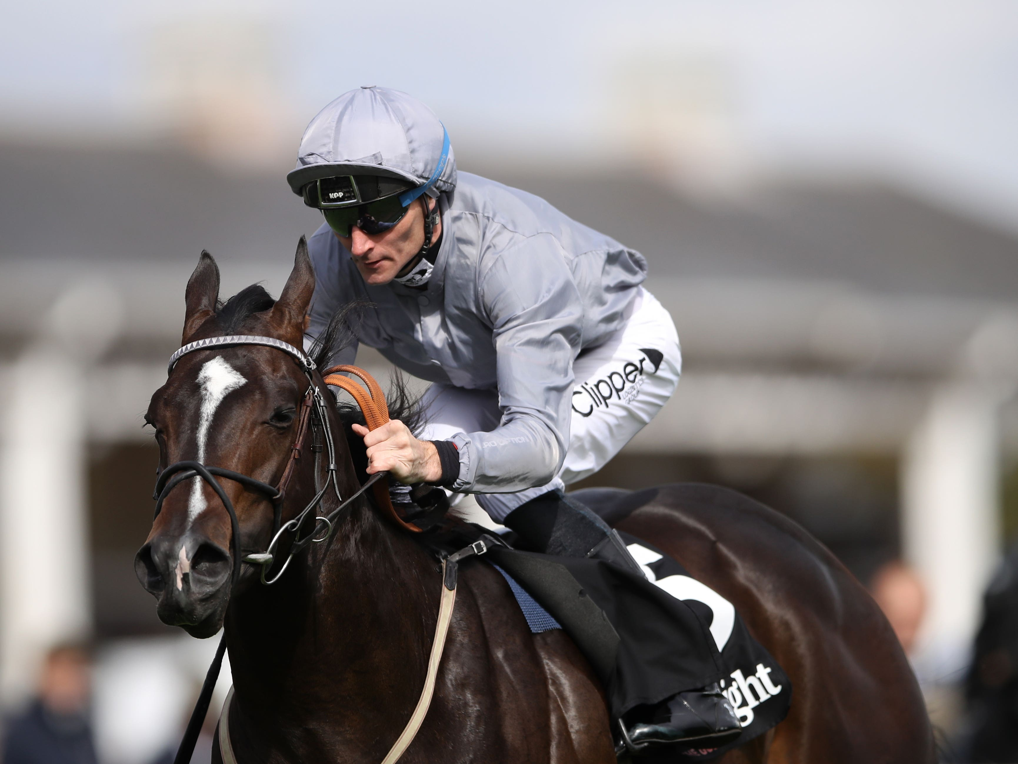 Soldier's Call will travel to Ireland for the Friarstown Stud Sapphire Stakes on his next start (Tim Goode/PA)
