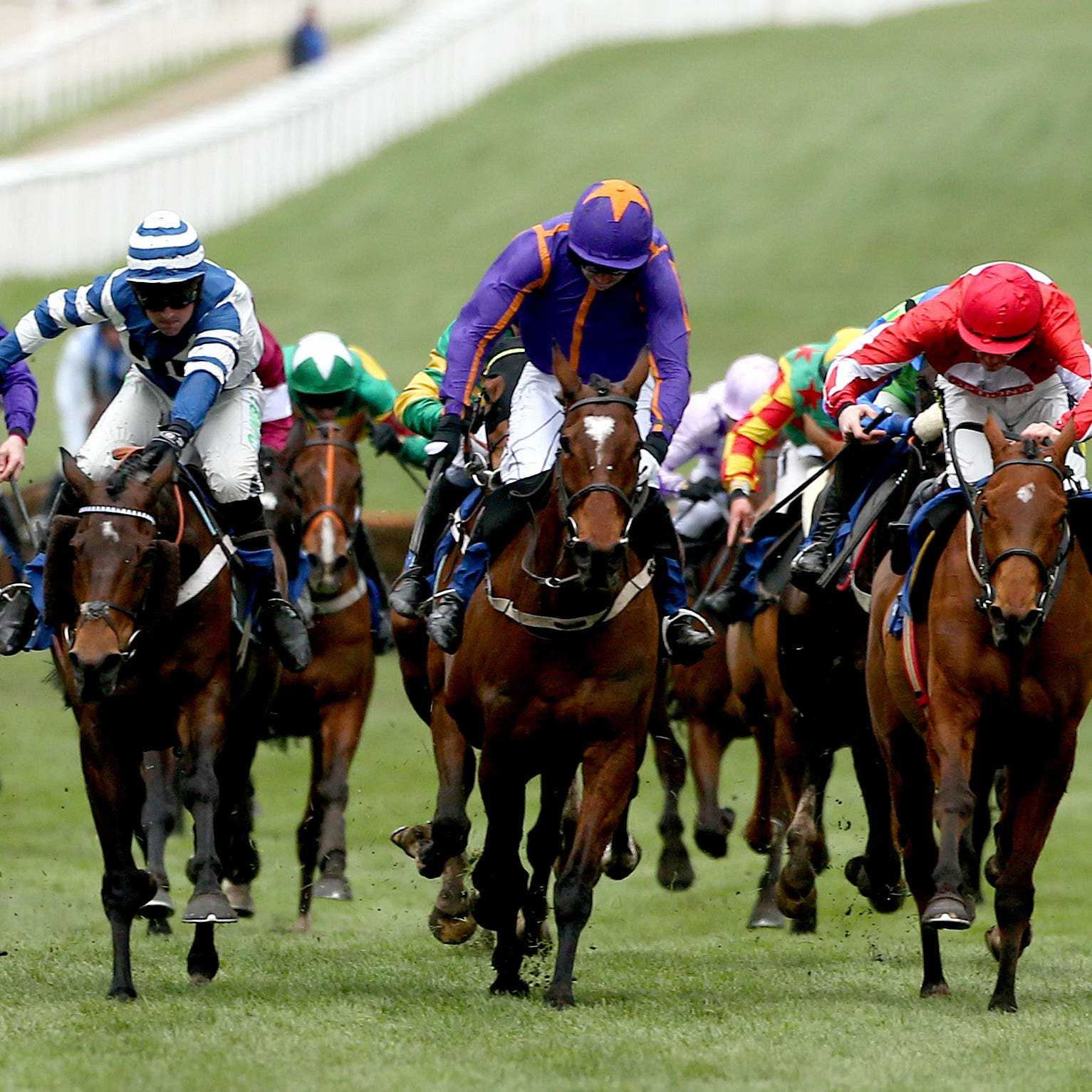 William Henry (blue and white) flashes home to win the Coral Cup