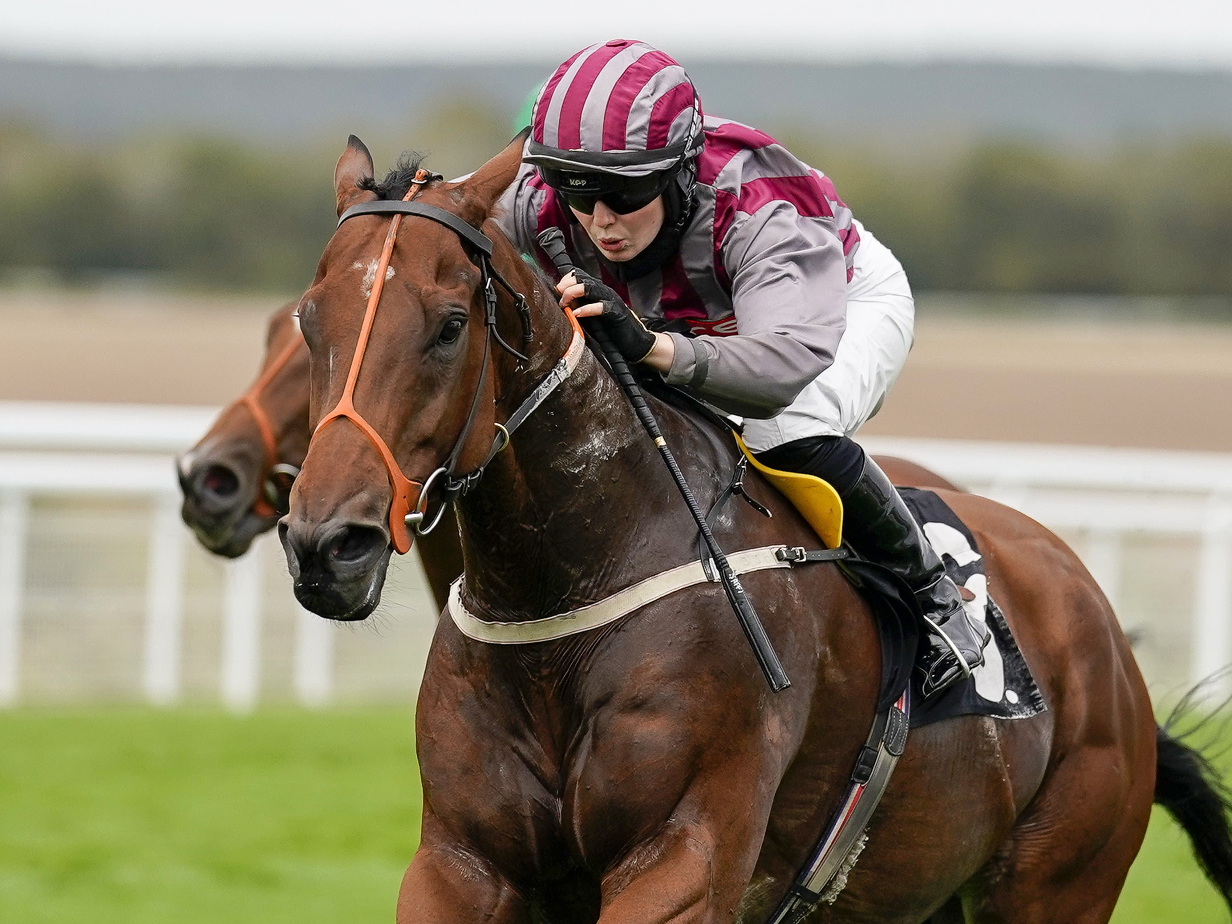 Saffie Osborne winning aboard Pettochside at Windsor before her fall later in the day (Alan Crowhurst/PA) wins The Download The tote Placepot App Apprentice Handicap at Goodwood Racecourse.
