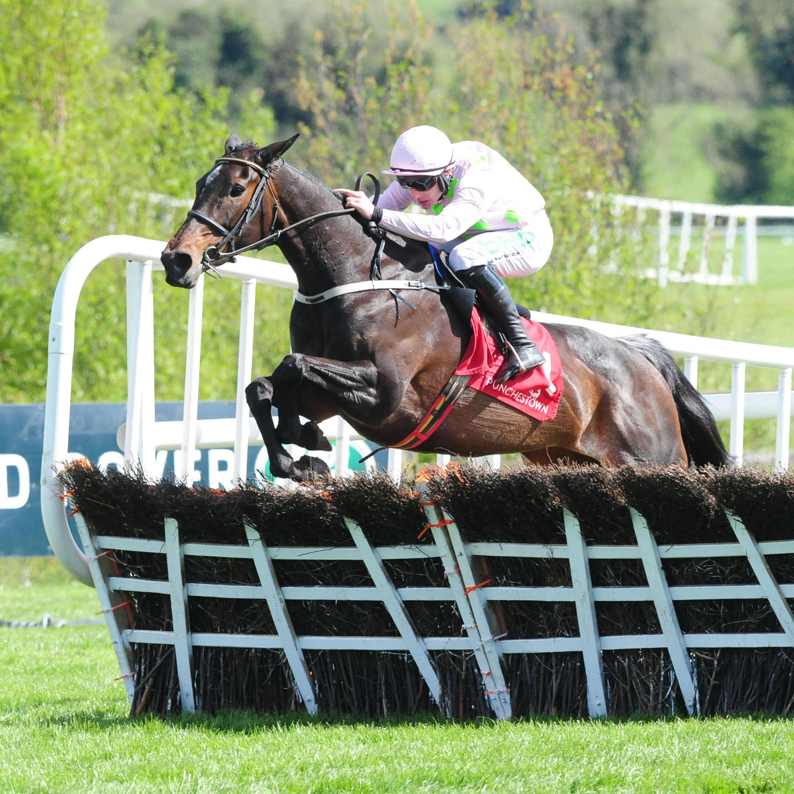 Benie Des Dieux followed up her Punchestown success with a superb staying performance in the French Champion Hurdle