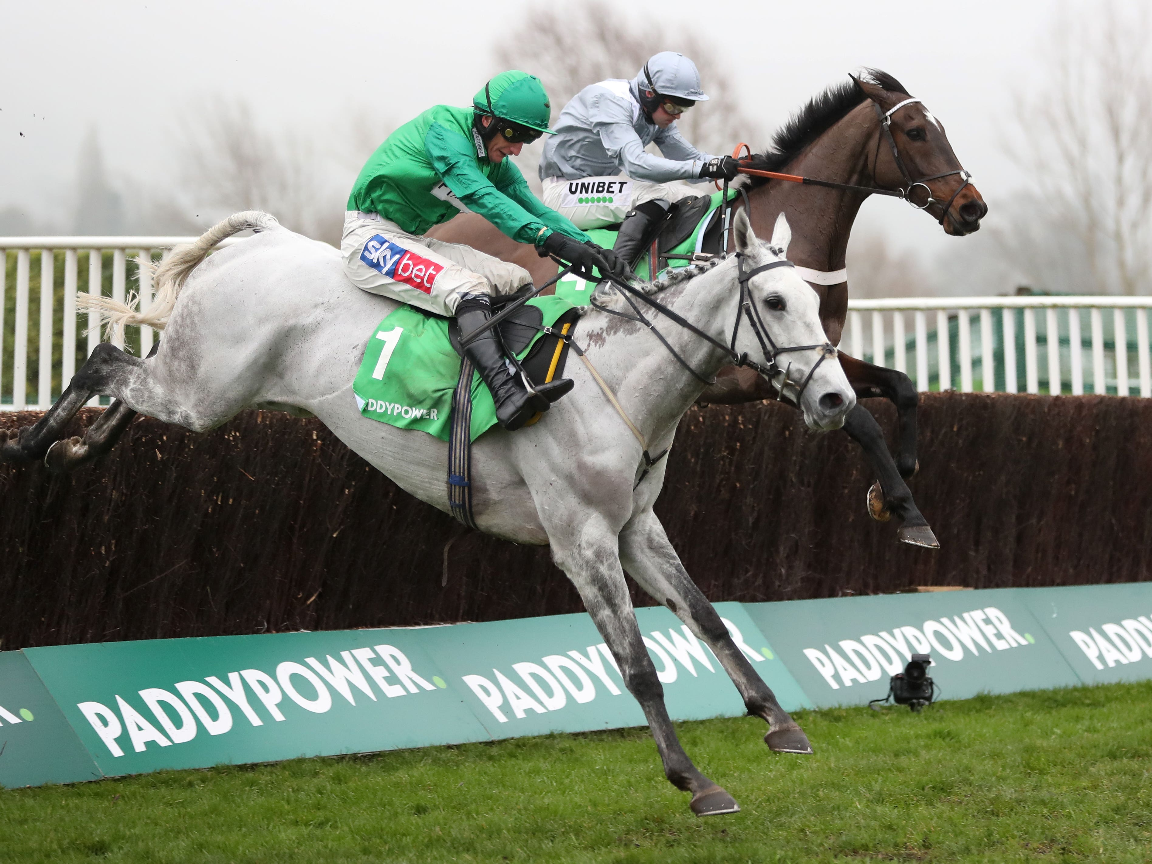 Bristol De Mai jumps the last just ahead of Santini (David Davies/PA)