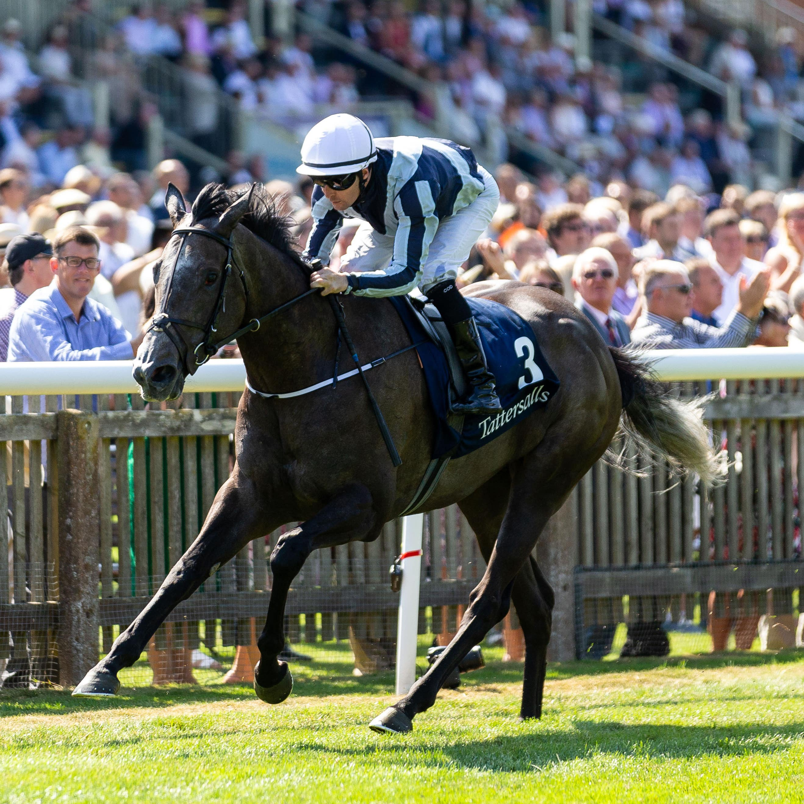 Alpha Centauri was a dazzling winner of the Falmouth Stakes