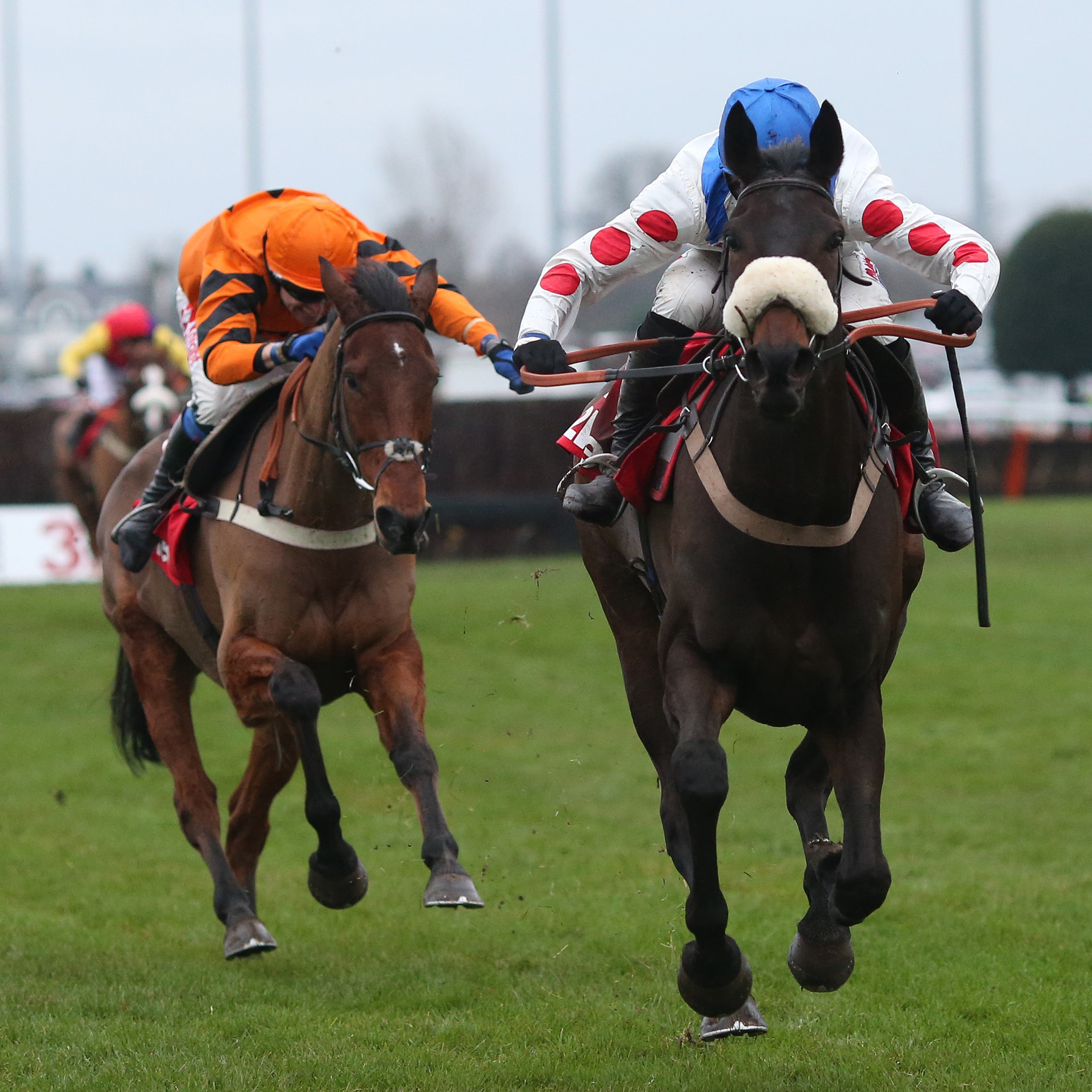Clan Des Obeaux could run again before the Cheltenham Festival if the Denman Chase is restaged