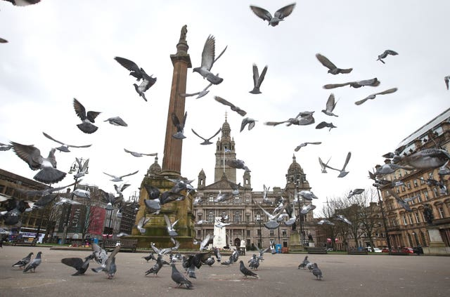 Pigeons fly in a quiet-looking George Square in Glasgow