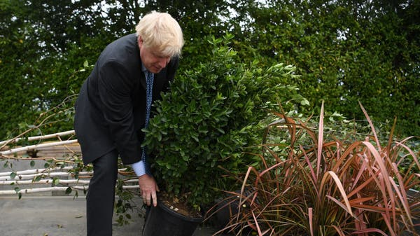 Tories pledge to triple tree-planting and launch ocean fund