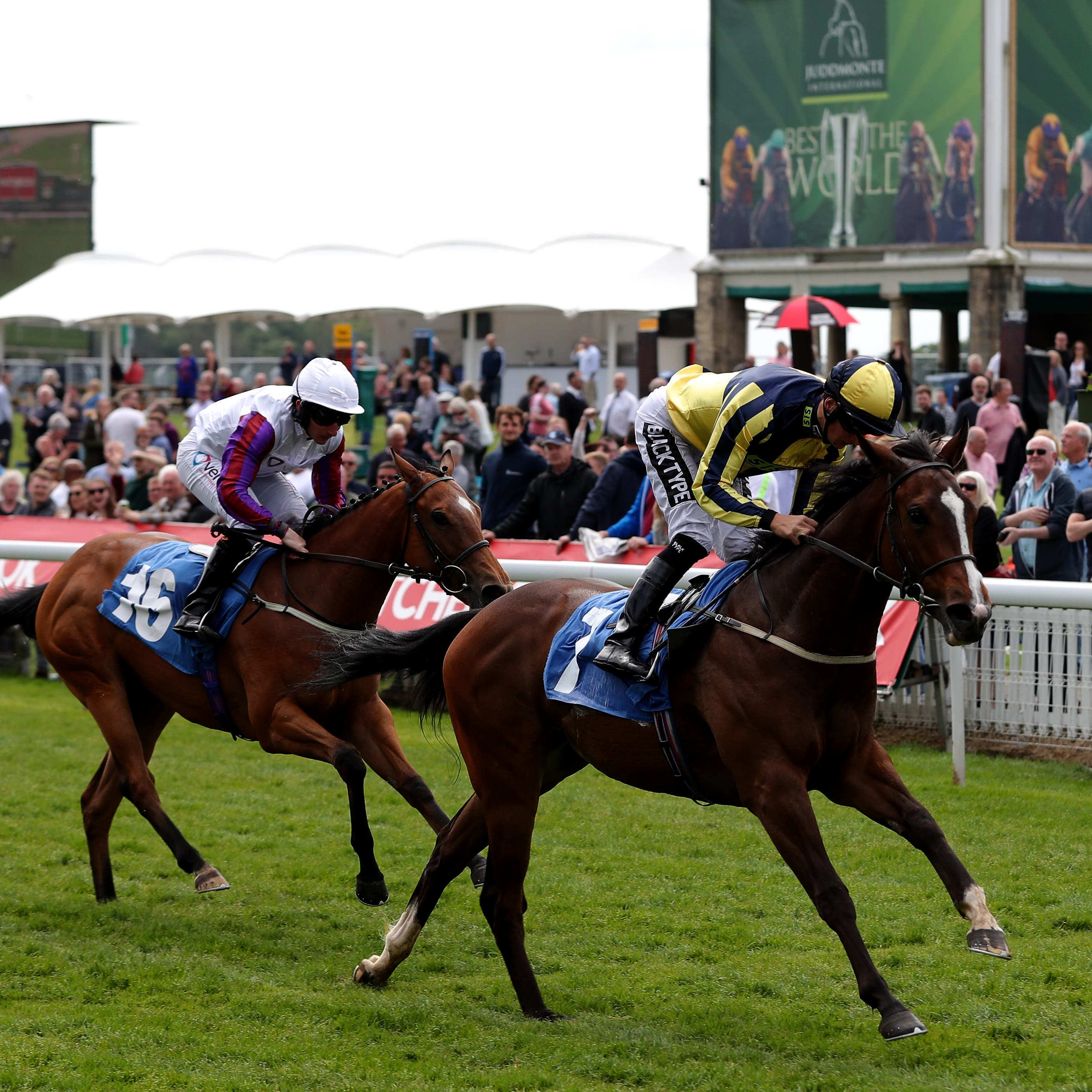Good Vibes booked her Royal Ascot ticket with victory at York