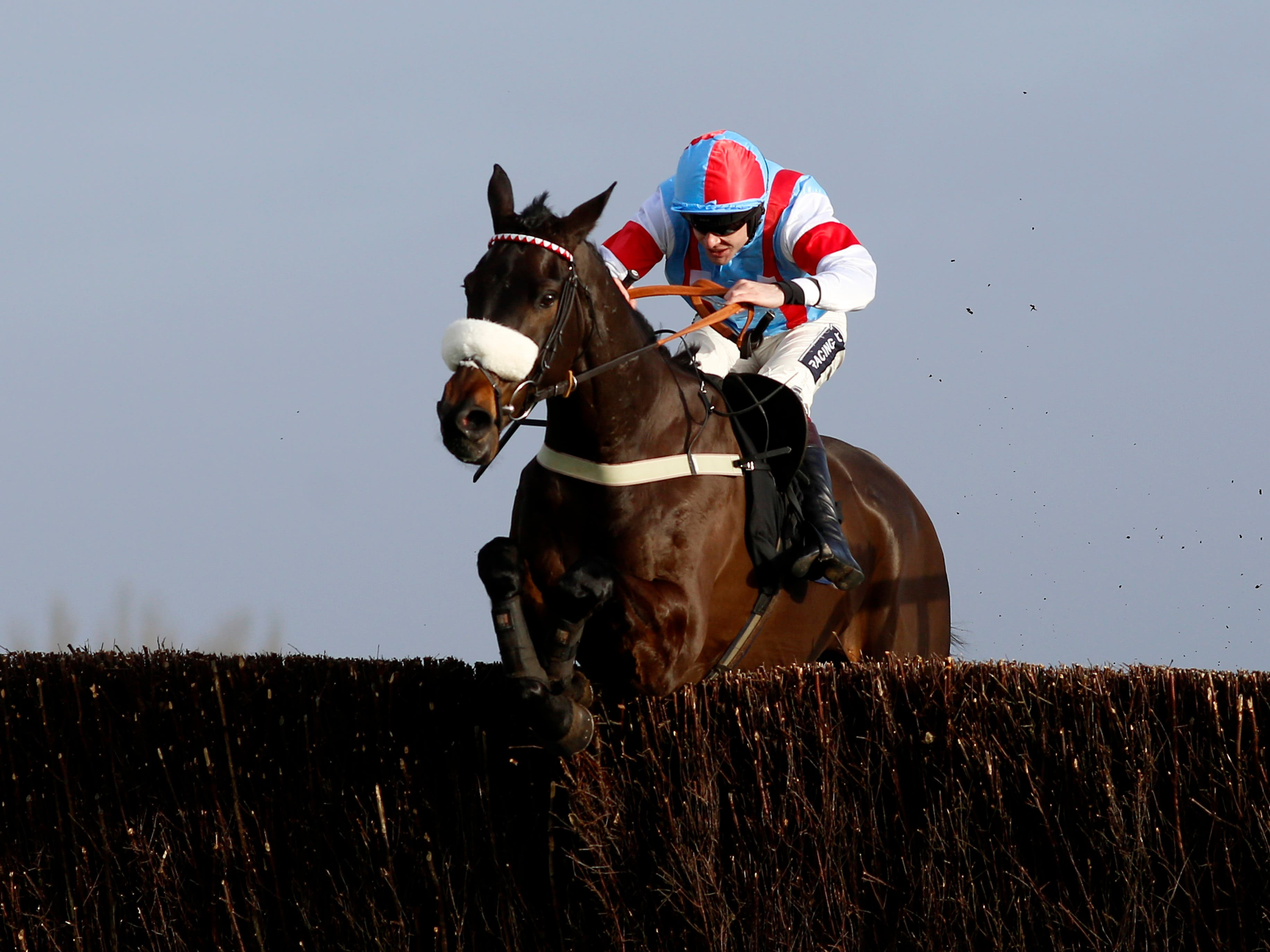 Saint Calvados could head for the Ladbrokes Dublin Chase at Leopardstown (Julian Herbert/PA)