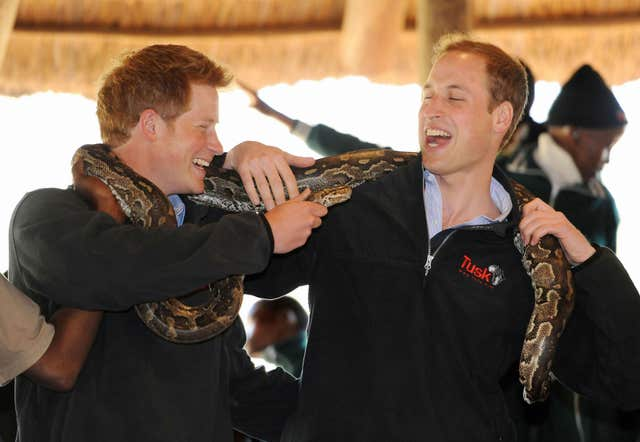 Prince Harry and Prince William pose with a rock python during a visit to the Mokolodi Nature Reserve in Gabarone, Botswana (Anthony Devlin/PA)