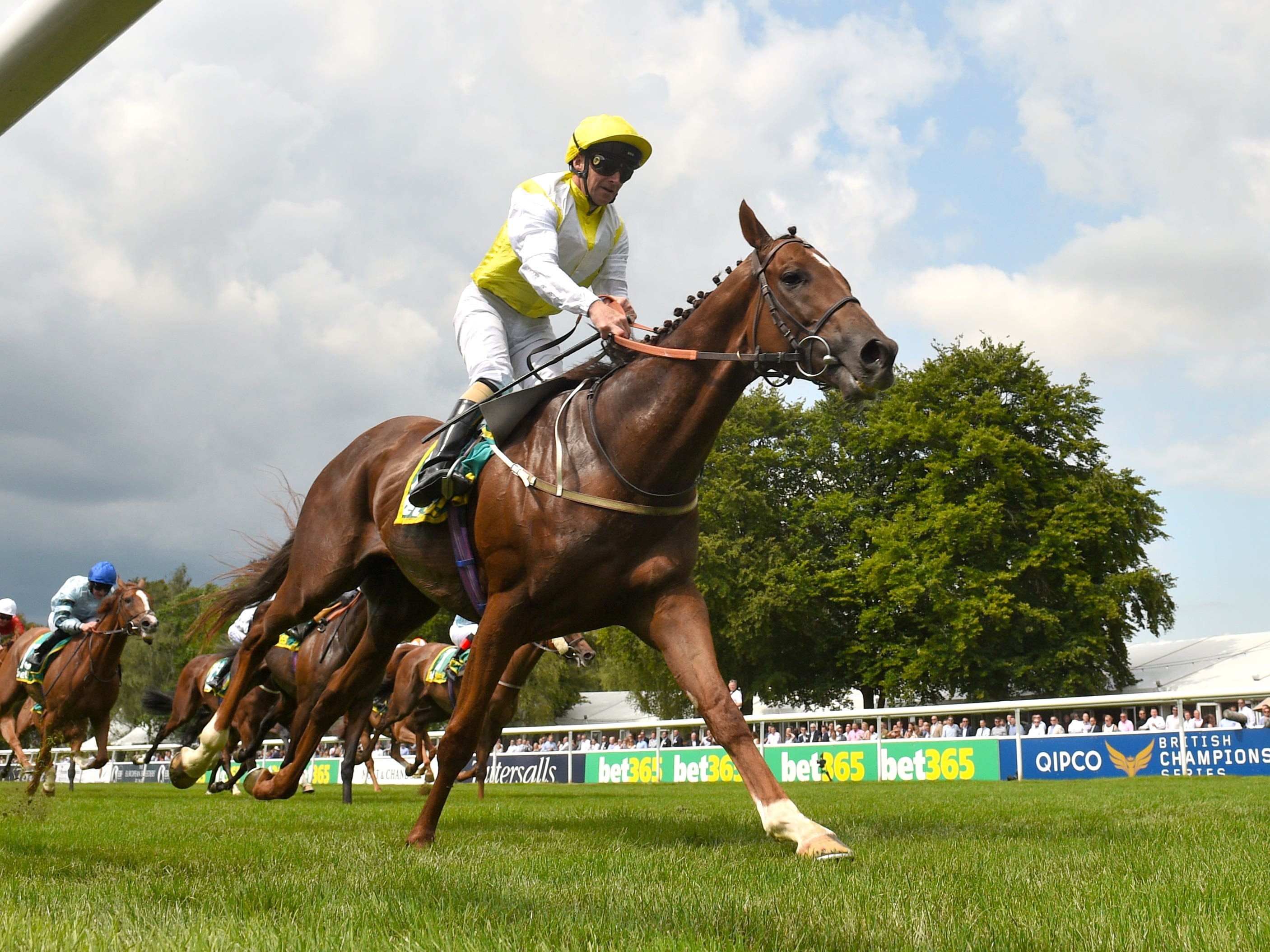 King's Advice emerged victorious at Newmarket (Joe Giddens/PA)
