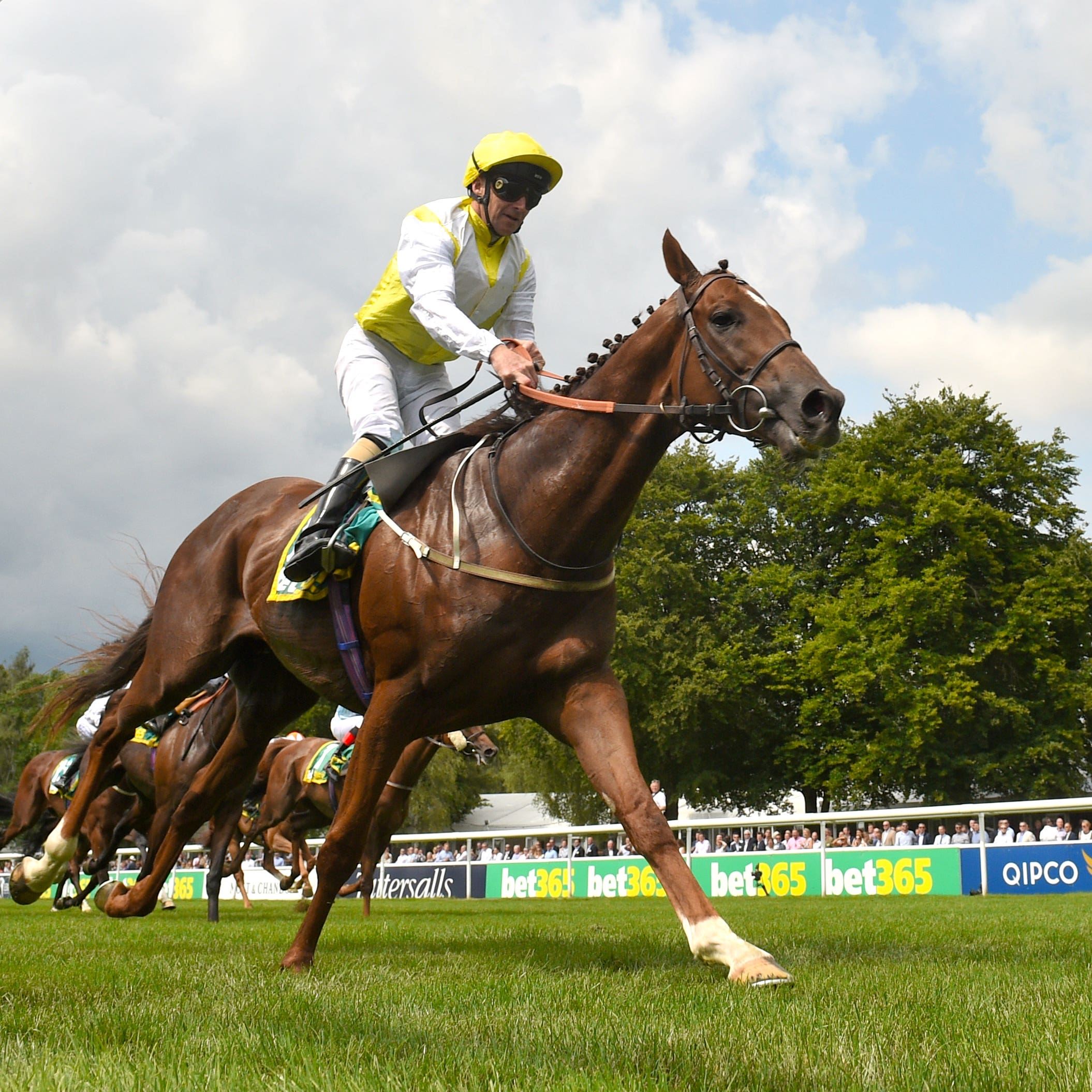 King's Advice emerged victorious at Newmarket