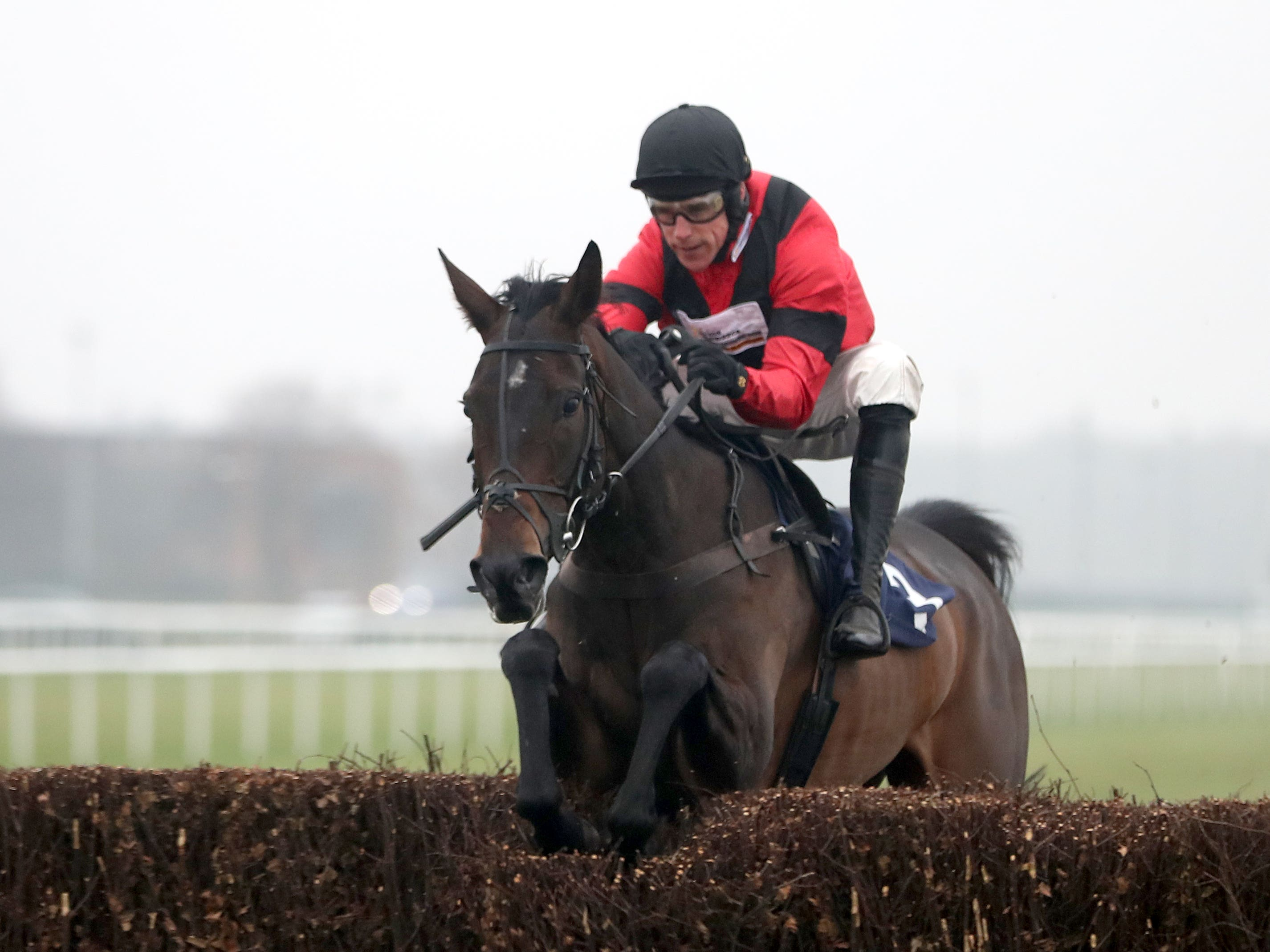 Rene's Girl could kick off her season at Aintree on October 28 (Simon Cooper/PA)