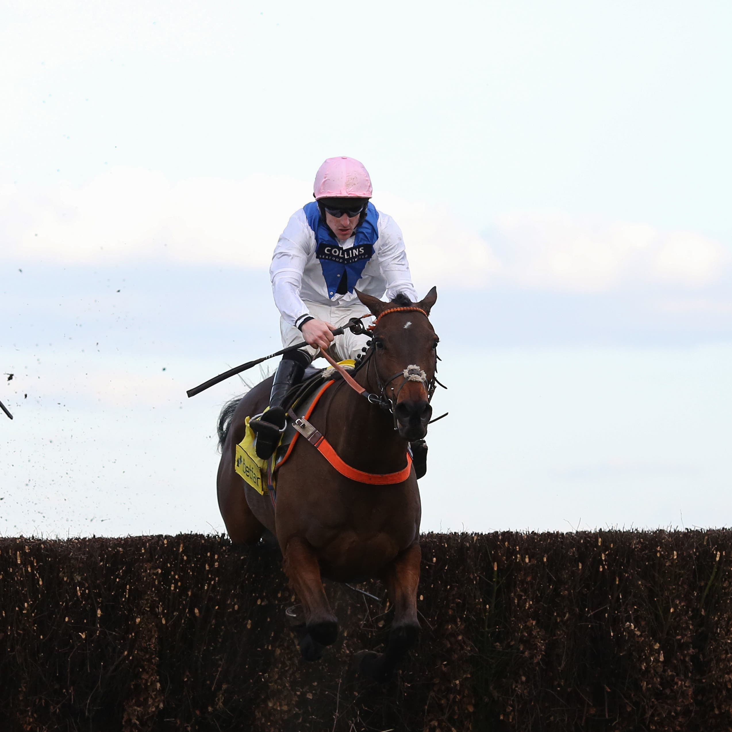 Waiting Patiently (right) won the Ascot Chase last year