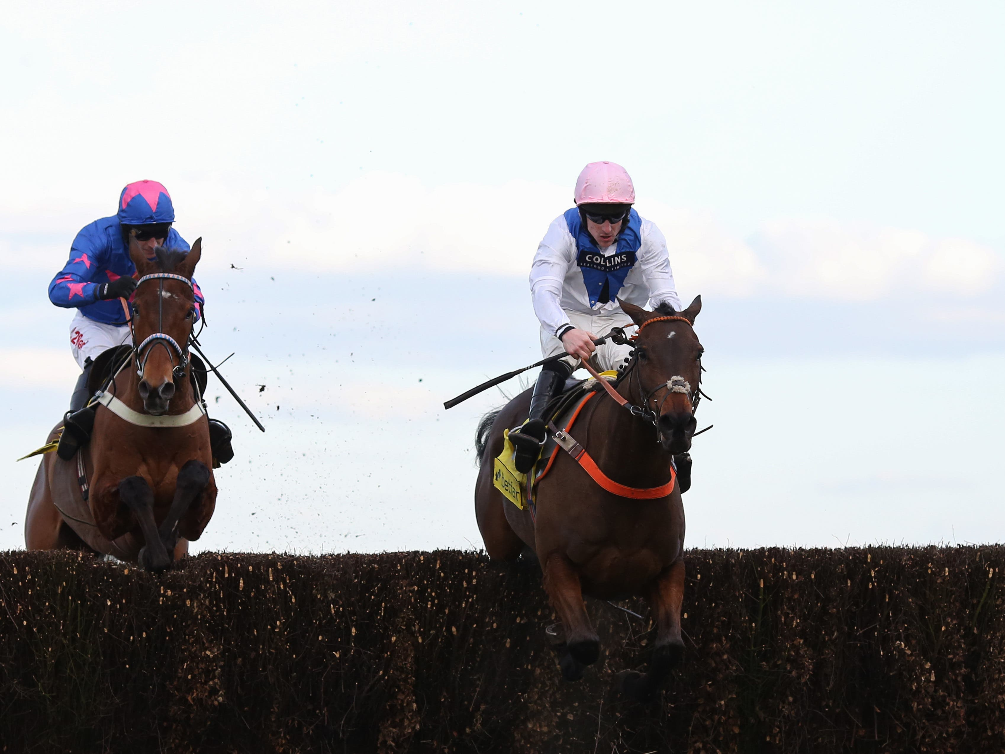 Waiting Patiently (right) won the Ascot Chase last year (Julian Herbert/PA)
