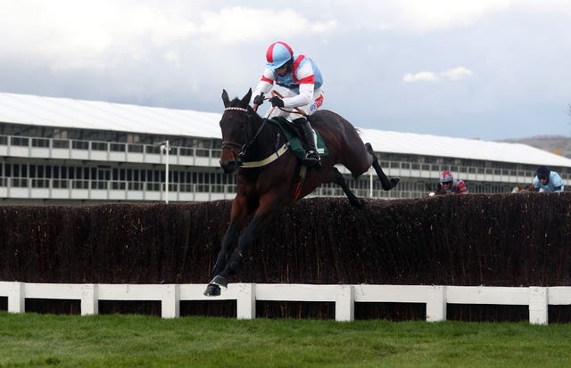 Rouge Vif could be heading to Kempton over Christmas