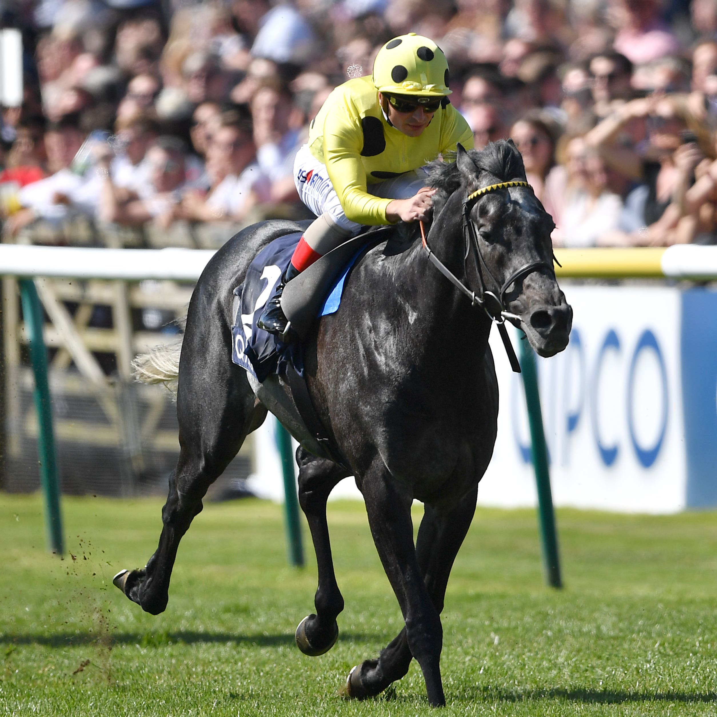 Defoe (right) wins the Jockey Club Stakes at Newmarket