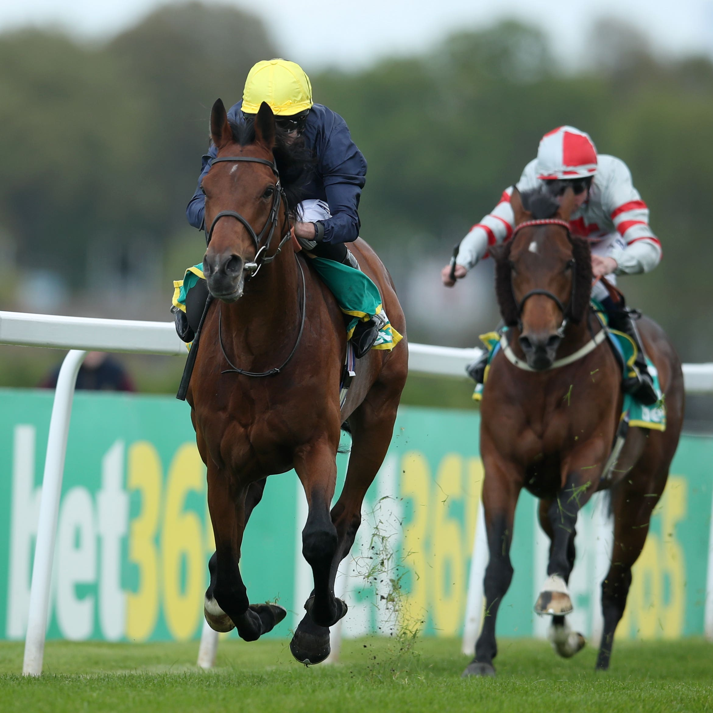 Crystal Ocean was an easy winner of the Gordon Richards Stakes