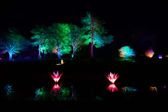'Christmas Glow' lights at RHS Garden Wisley