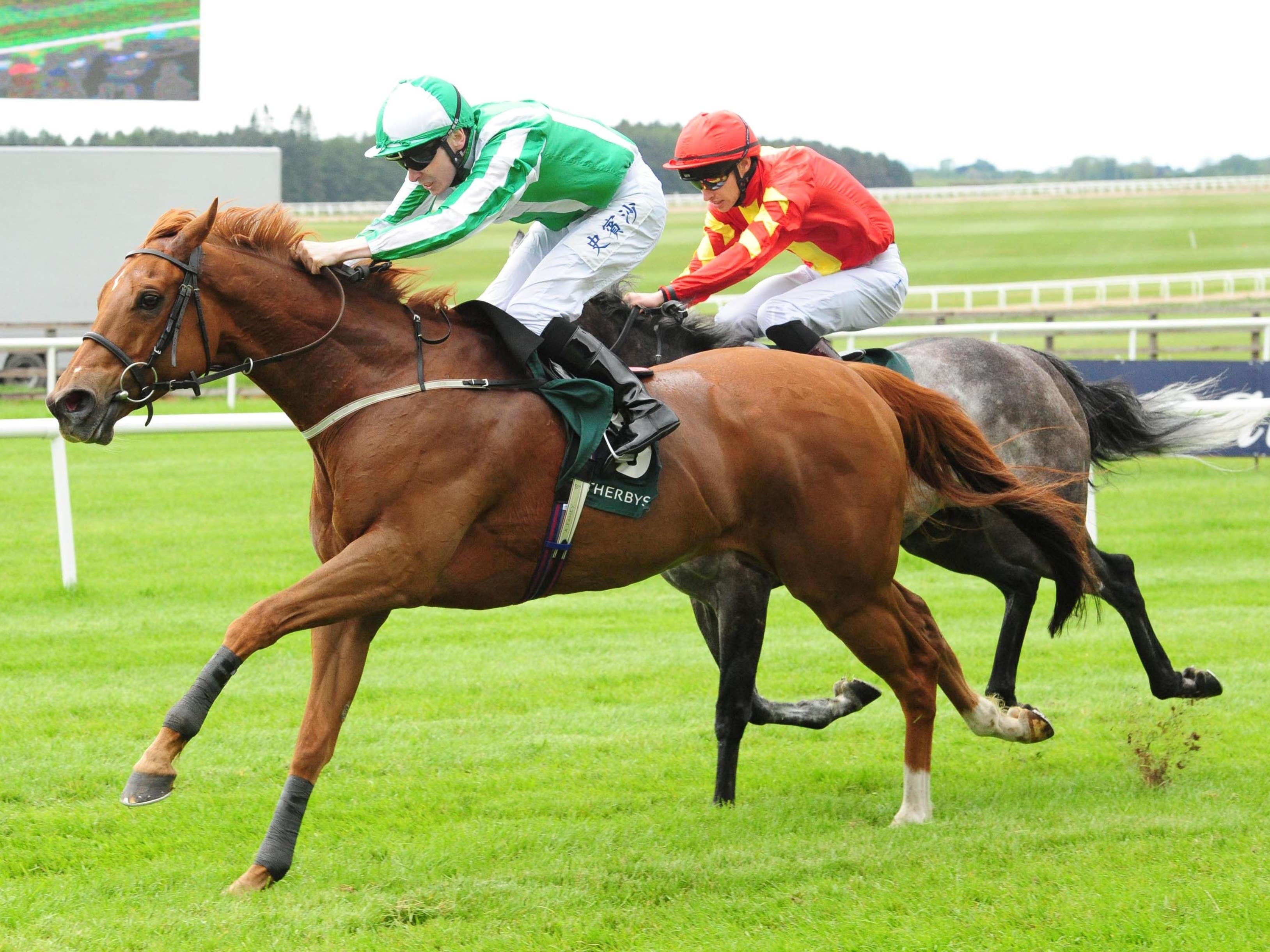 Mr Lupton will try get his career back on track in the William Hill Ayr Gold Cup on Saturday (PA Images)