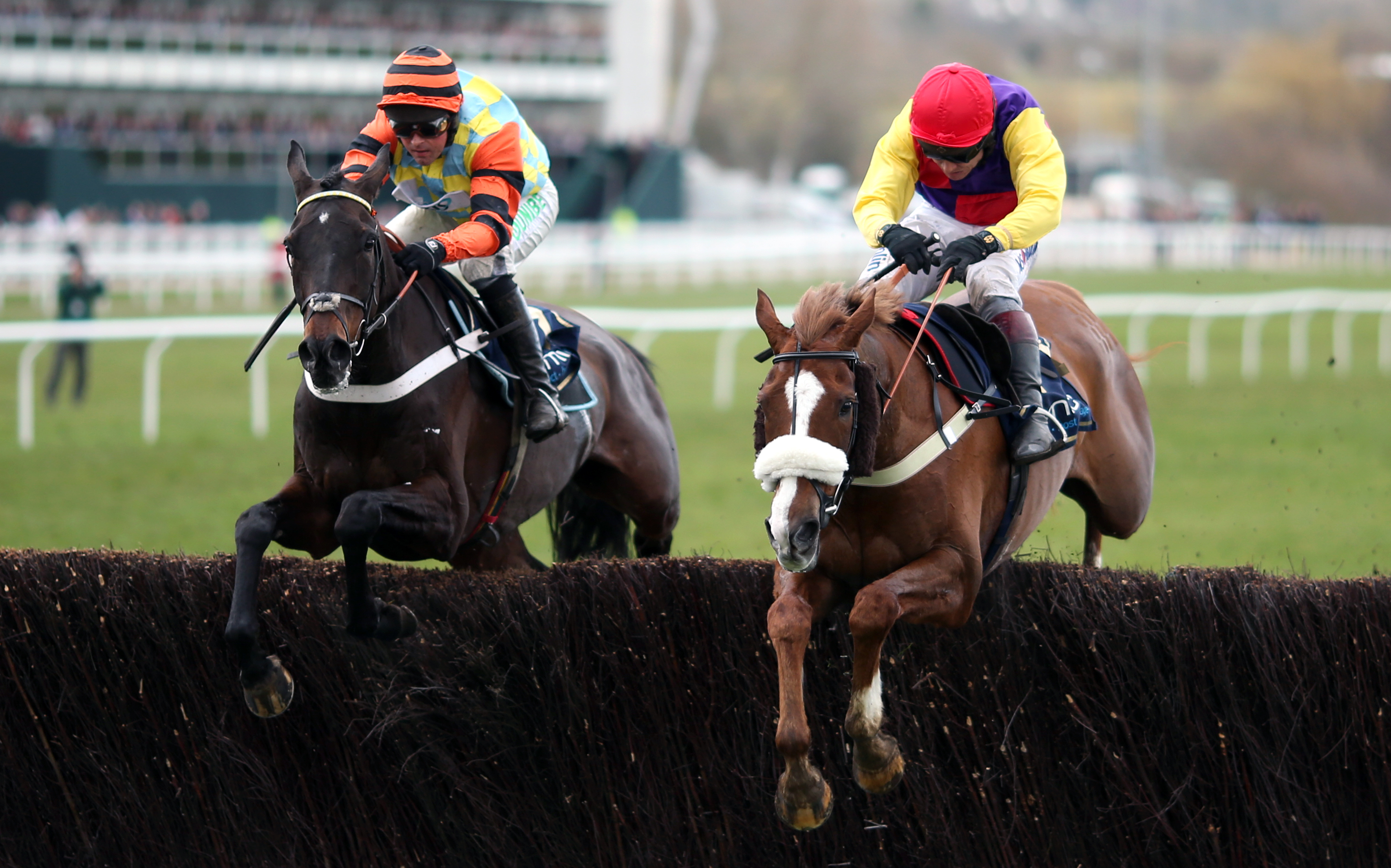 Native River (right) came out on top of a great tussle with Might Bite in the Gold Cup