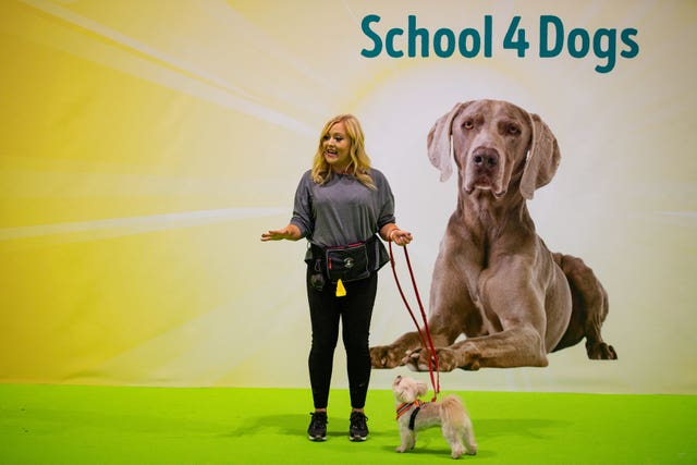 The School 4 Dogs held demonstrations