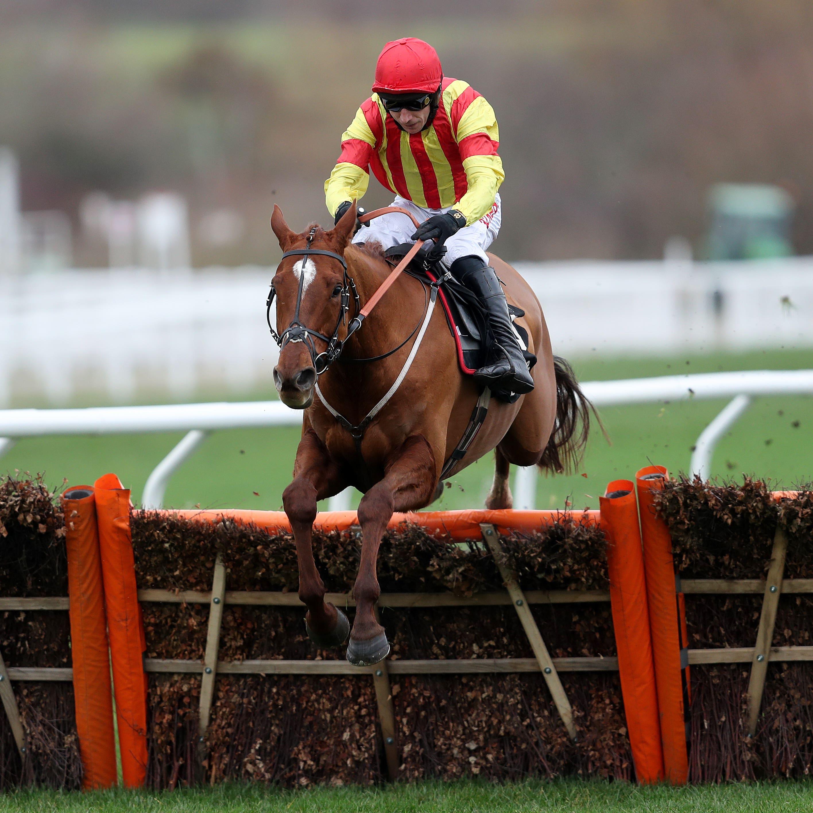 Jarveys Plate was an easy winner at Cheltenham