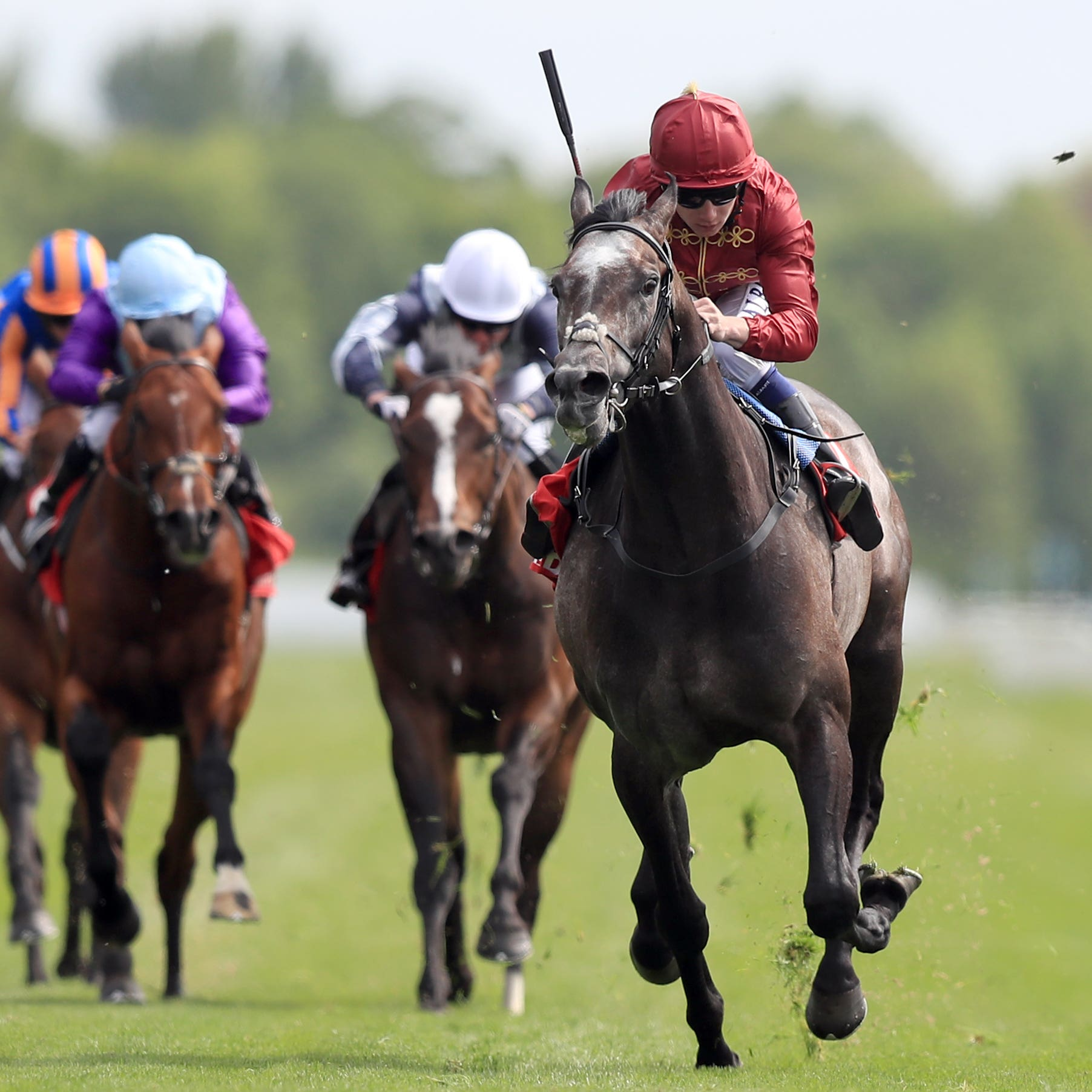 Roaring Lion rocketed to Dante success (Simon Cooper/PA)