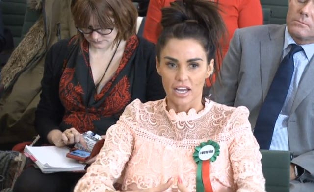 Katie Price gives evidence to the Commons Petitions Committee in 2018
