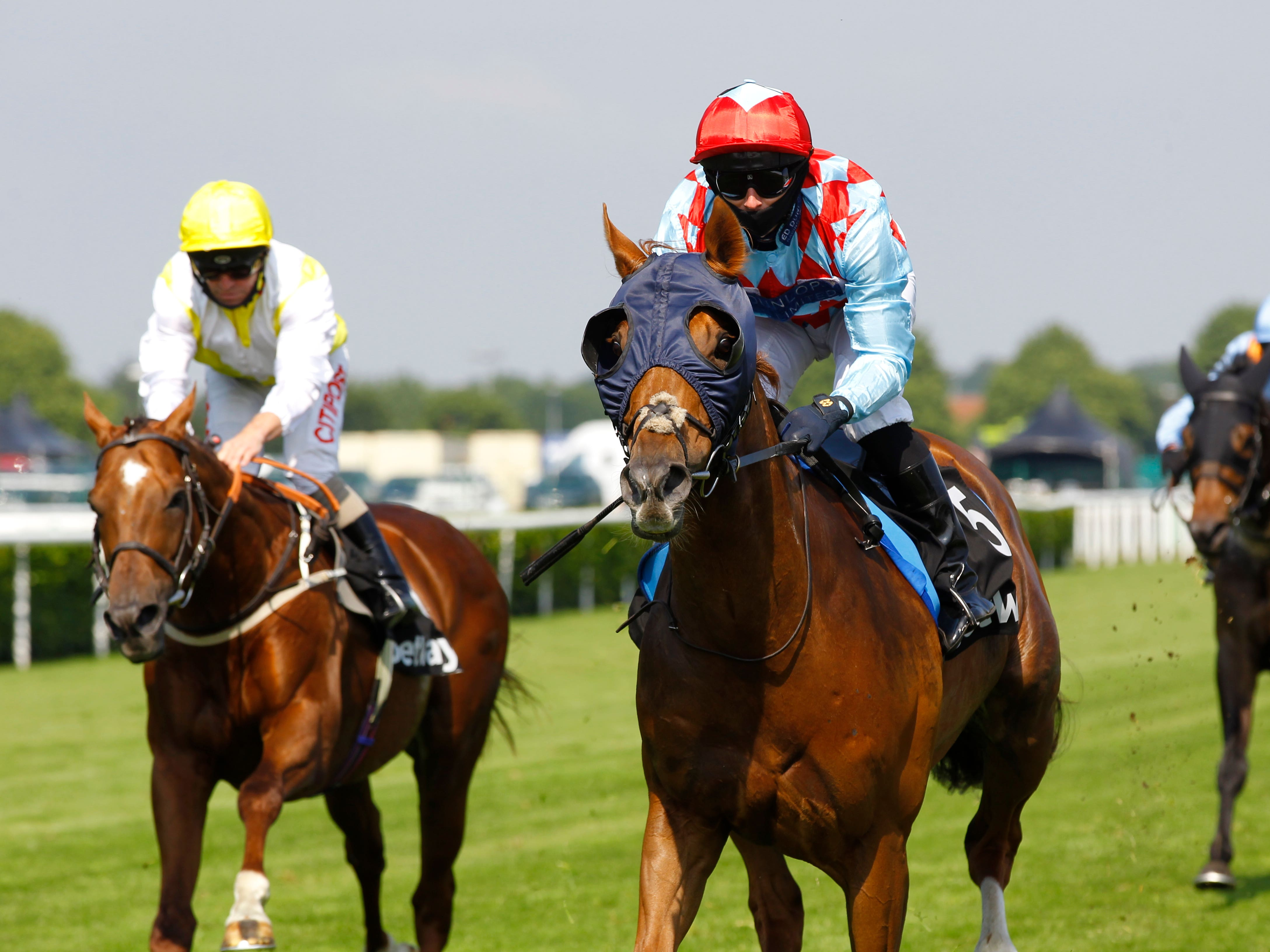 Red Verdon was an easy winner at Doncaster (Steve Davies/PA)